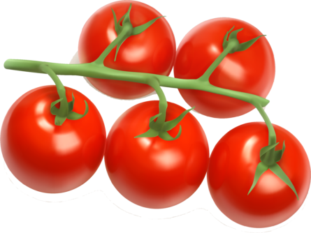 Cherry Tomates on Vine